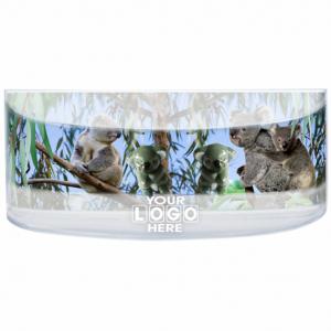Oily Rectangular Curved Magnet Koala Family