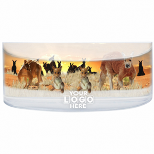 Oily Rectangular Curved Magnet Red Roos at Sunset